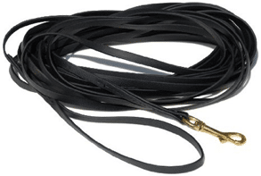 black long leash