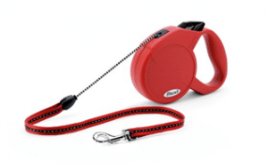 retractable leash